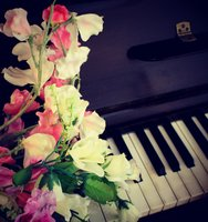 flowers_and_a_piano_by_cloboo-d5j2smi